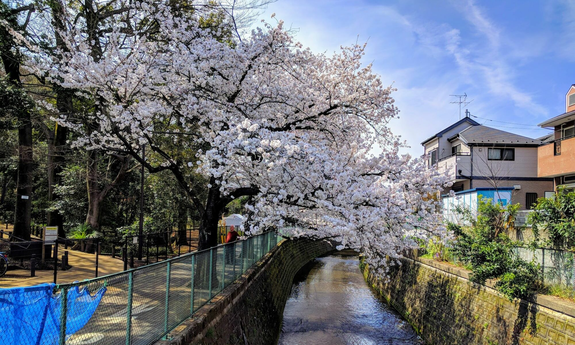 雨宮千夏の博麗神社